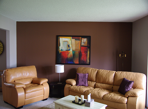 Residential Painting feature walls Edmonton